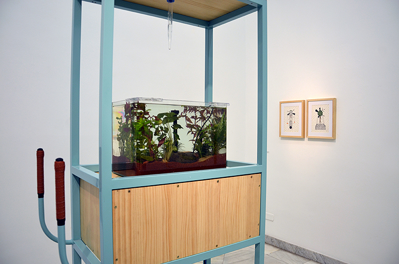 Bike-aquarium (detail view)